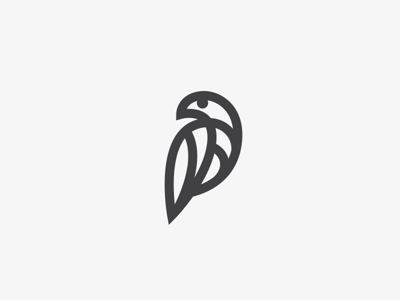 spiral_bird
