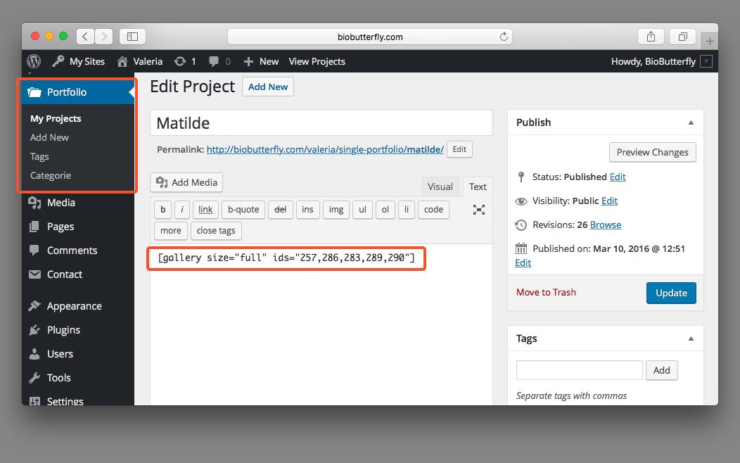 WordPress Documentation Portfolio Add New Post