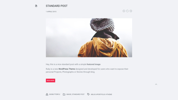 Ruby Blog Thumbnail - Template WordPress on Envato Market